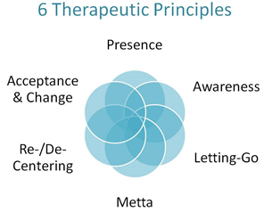 6 Therapeutic Principles